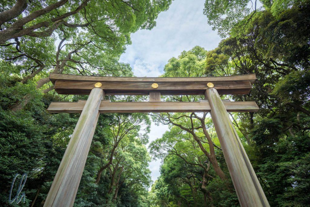 Eingangs-Torii des Meiji-Schreins