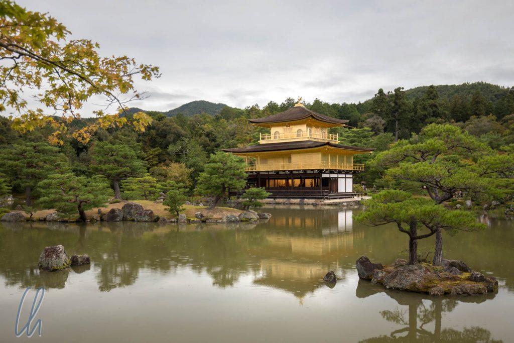 Der Goldene Pavillon im Kinkaku-ji