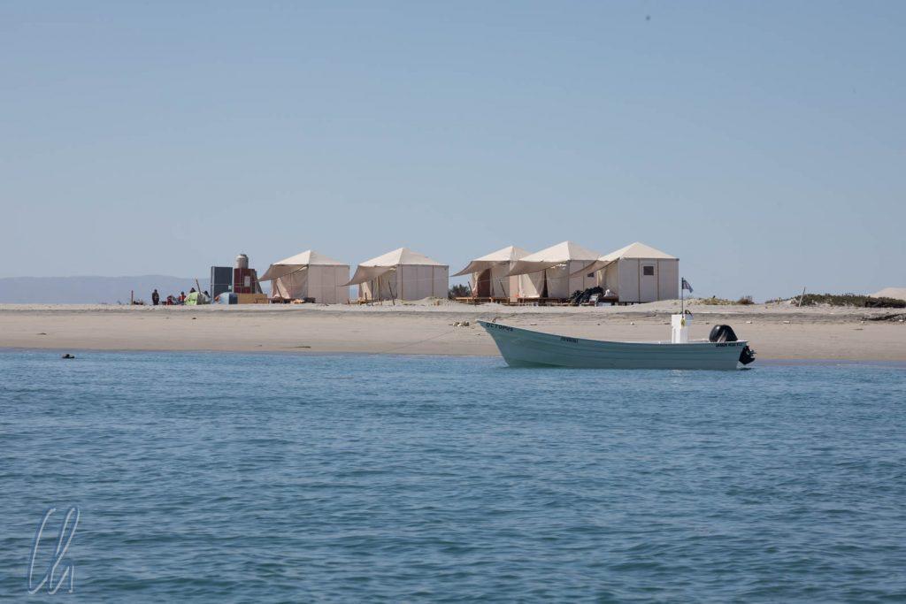Die Zelte des Whale Camps vom Wasser aus gesehen