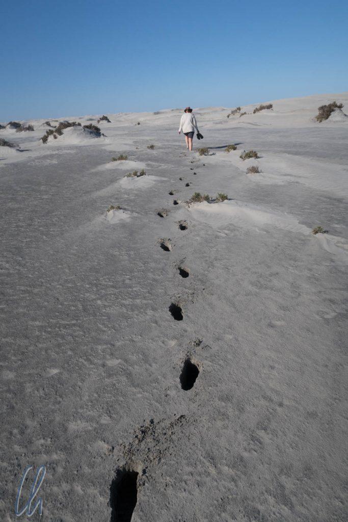 Sandspaziergang in der Nähe des Whale Camps