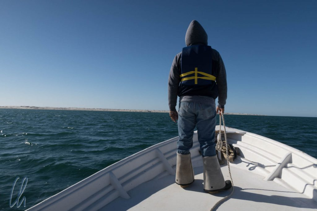 Chef-Walbeobachter Eric auf der Suche nach den Walen
