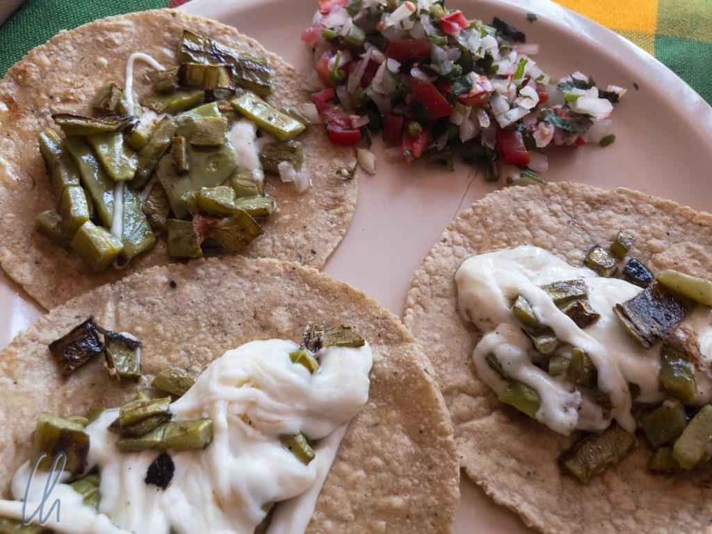 Tacos, hier mit Nopale-Kaktus und Käse