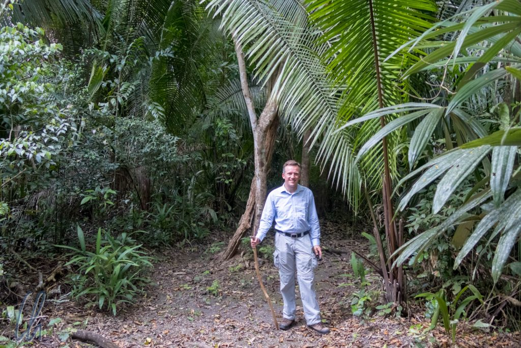Auf Wanderschaft im Dschungel, ganz natürlich, mit einem Stück Holz!