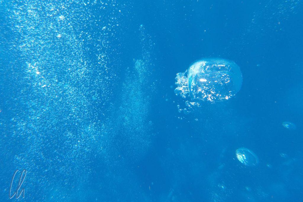 Die Luftblasen der Taucher stiegen und pittoresk entgegen