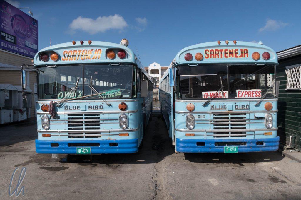 Bestimmt nicht bequem, aber sehr malerisch, die Bluebird-Busse