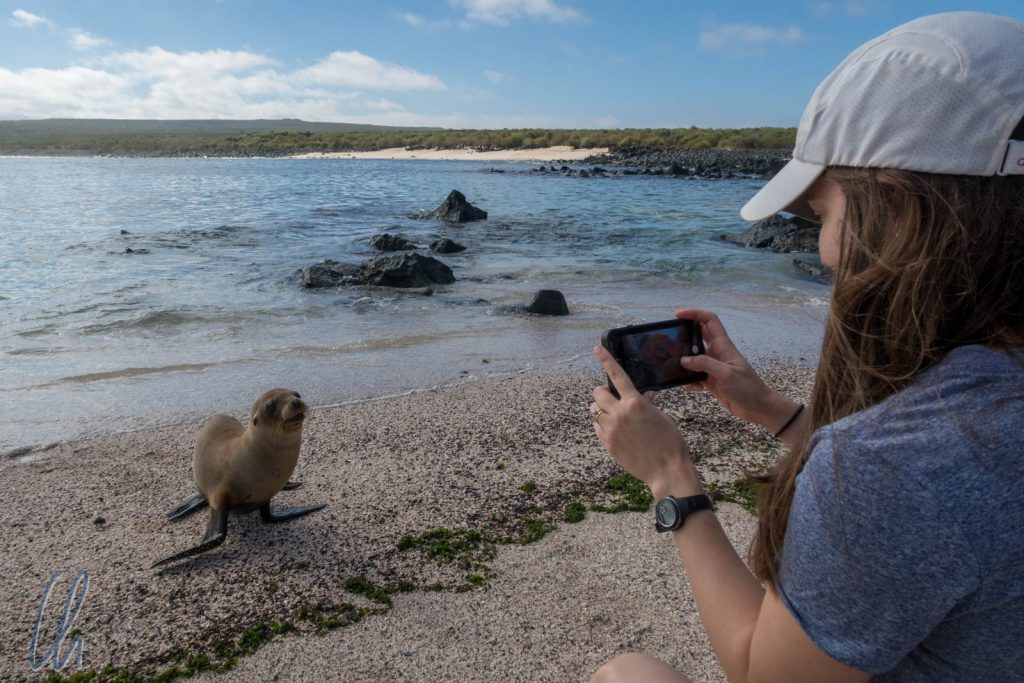 Natalia und der Baby-Seelöwe