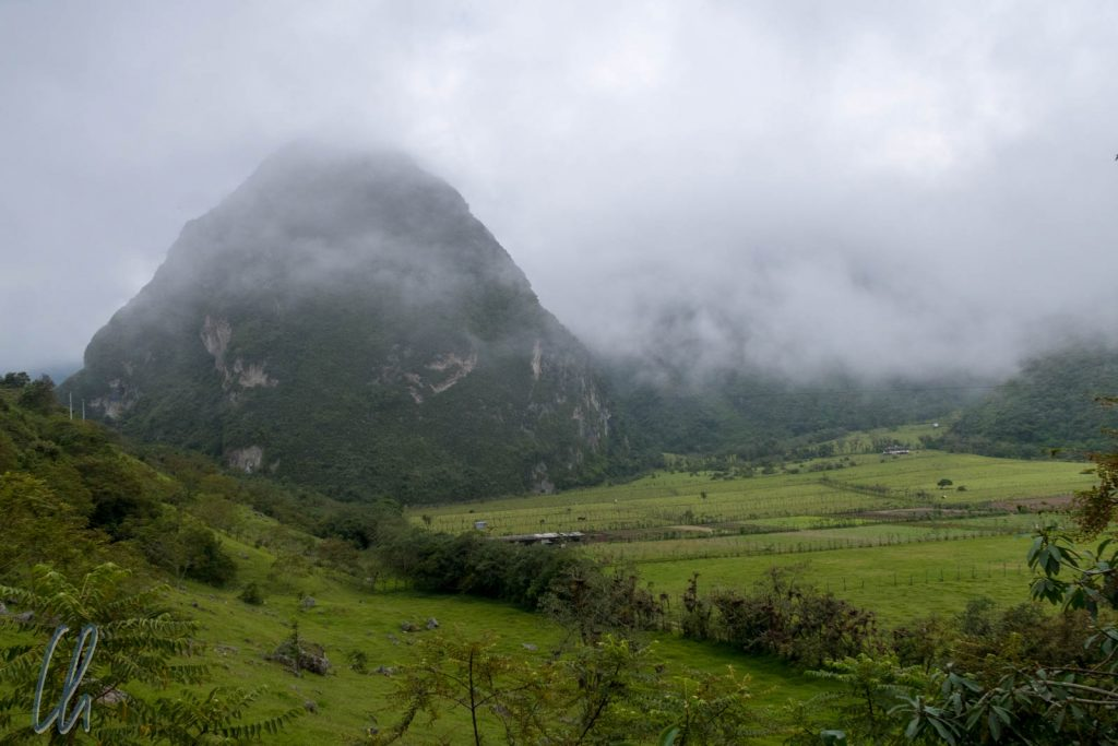 Nebelwaldfeeling im Pululahua
