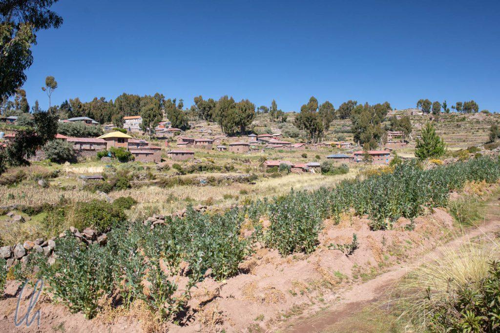 Auch Taquile ist landwirtschaftlich geprägt