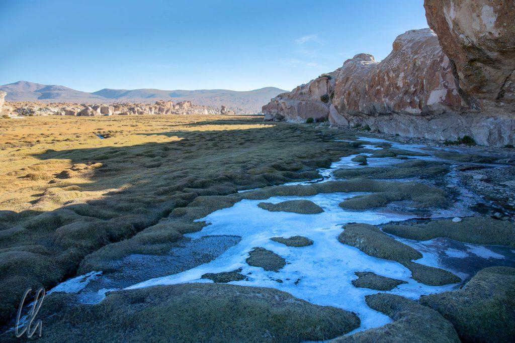 Eiskruste in der Nähe der Laguna Negra. Im Dauerschatten war das Wasser gefroren.