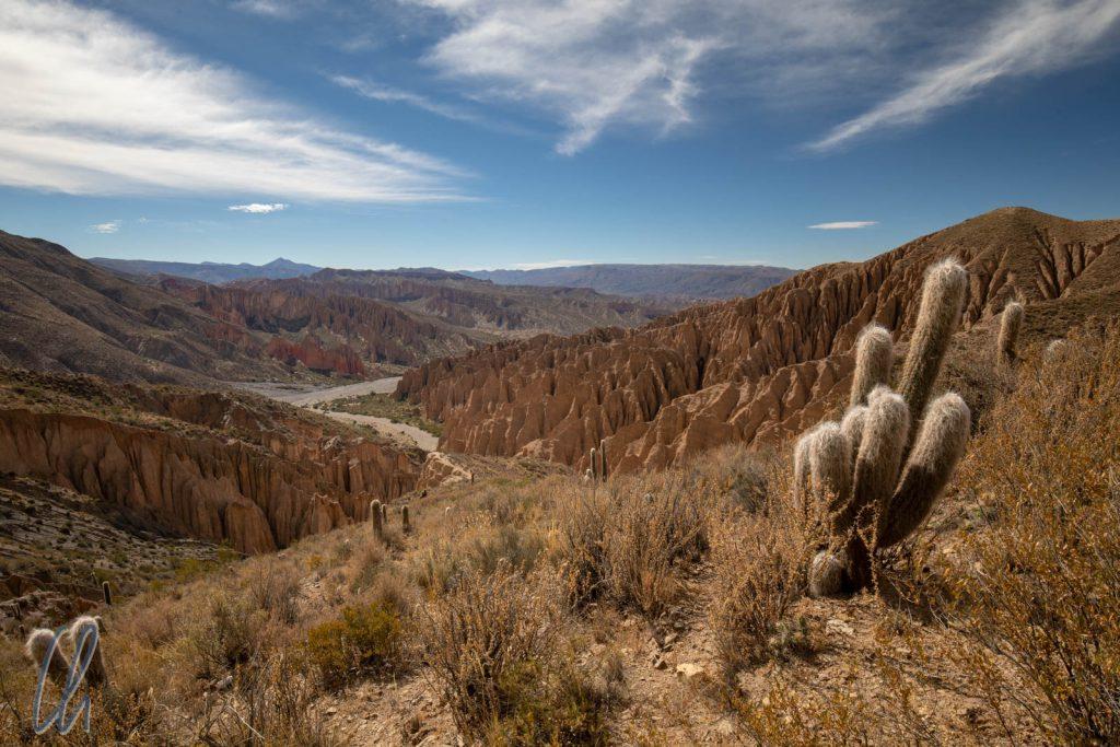 Kurz vor Tupiza: Quebrada Palala