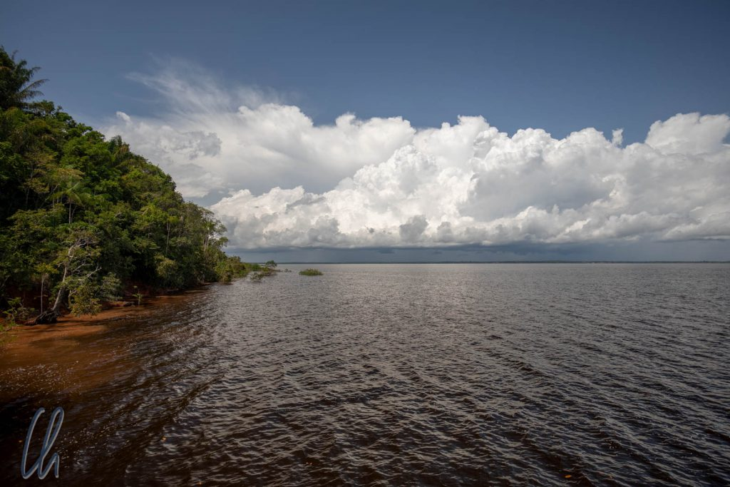 Das Wasser des Rio Negro ist in der Tat sehr dunkel, aber eigentlich eher bräunlich als schwarz.