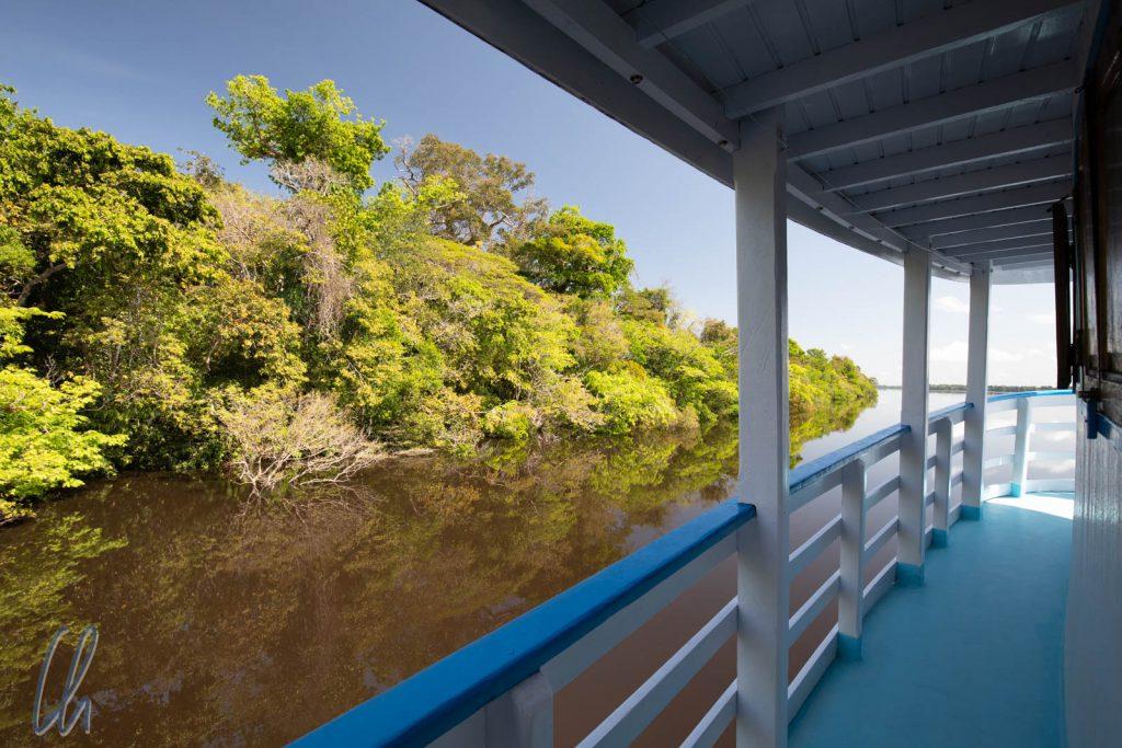 Land unter und Baum unter, das Wasser des Rio Negro steht 12 Meter höher als in der Trockenzeit.