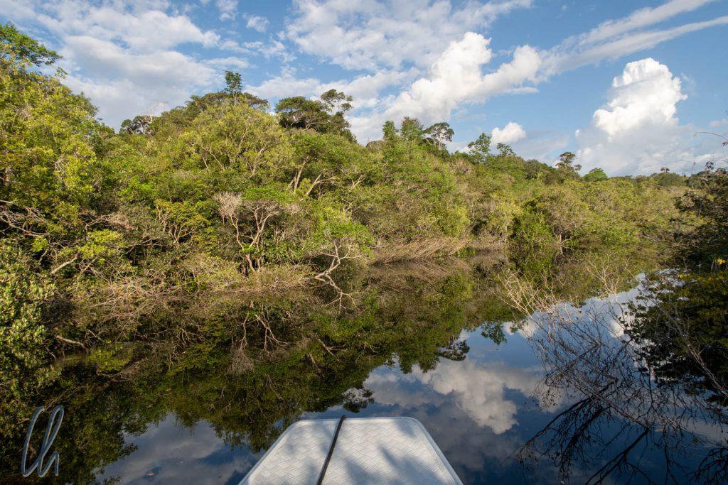 Fahrt durch die Wolken im Parque Nacional do Jaú
