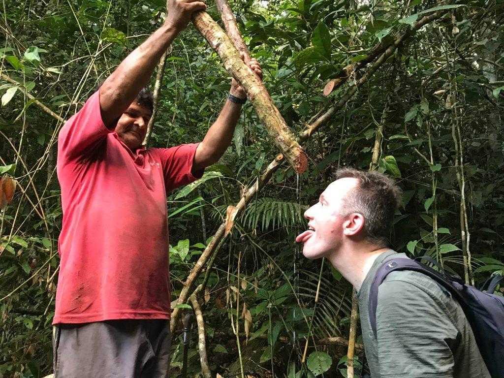 """Die dicke Liane spendet einen Dschungel-Drink (Foto von <a href=""""https://www.instagram.com/amazonemotions/"""">Leo</a>)."""