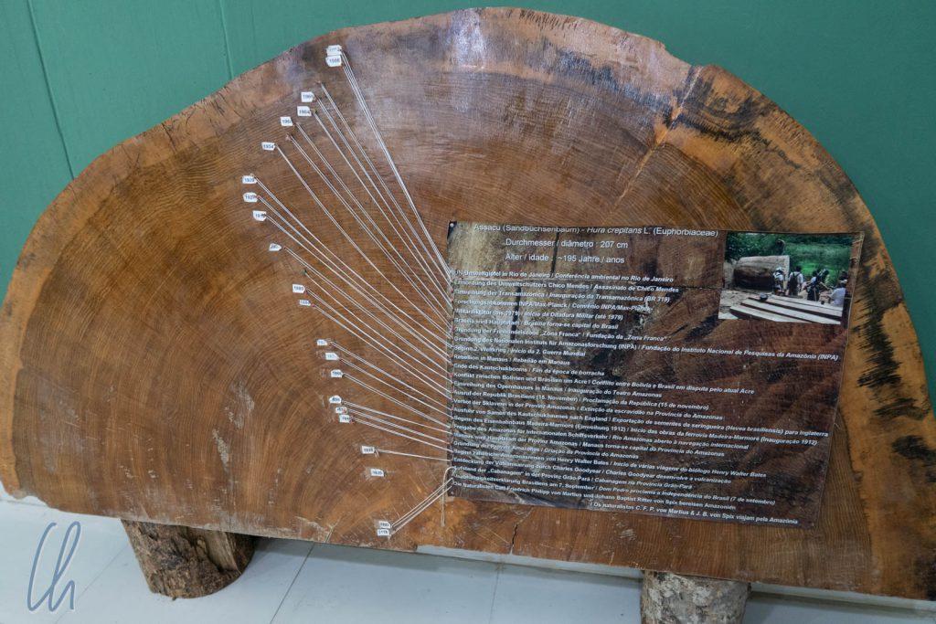Die erlebte Geschichte eines Baumes: Auch wenn selten Englisch gesprochen wurde, gab es in Museen häufiger englische Schilder. Dieses interessante Stück war erstaunlicherweise auch auf Deutsch beschriftet.