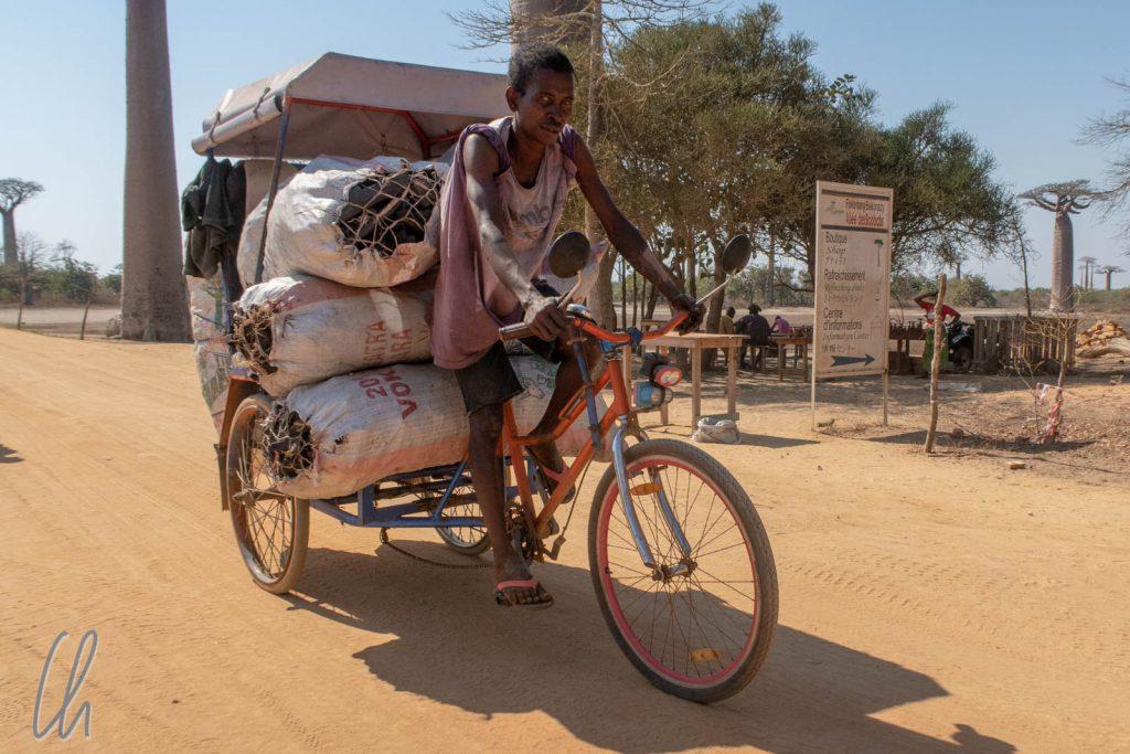 Holzkohletransport auf der Baobab-Allee