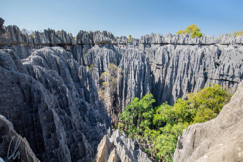 Der Nationalpark Tsingy de Bemaraha