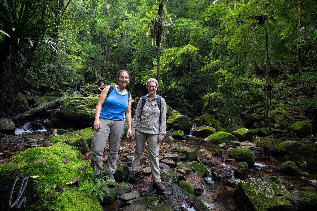 Auf der Masoala-Halbinsel befindet sich das größte noch zusammenhängende Regenwaldgebiet Madagaskars.
