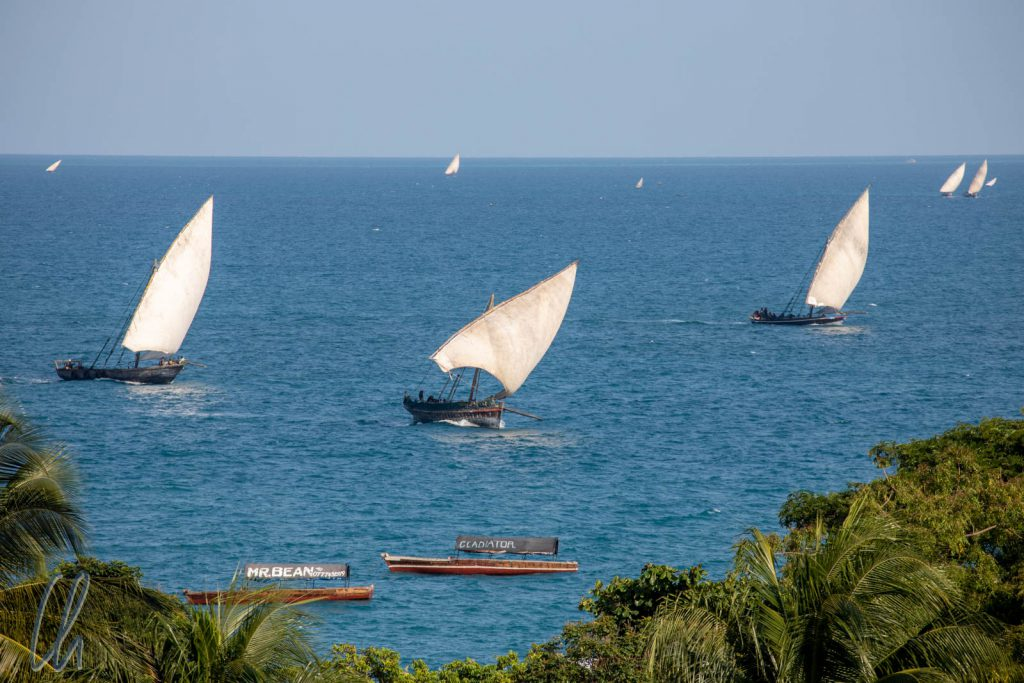 Typische Segelboote vor Sansibar. Unser Fähre war deutlich moderner.