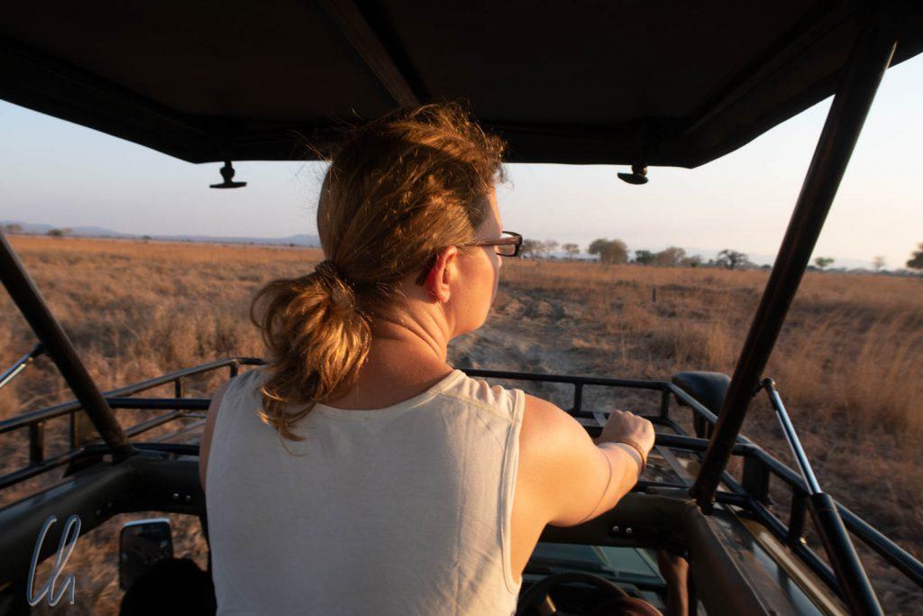 Bester Ausblick von Safari-Jeep