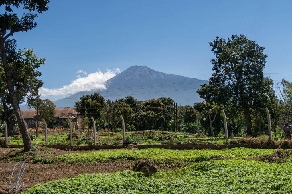 Auch in direkter Nachbarschaft unseres Hostels sahen wir den majestätischen Mount Meru