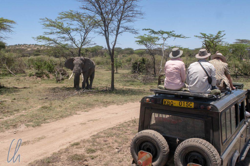 Mit den Jeeps kamen wir den Tieren am nächsten.