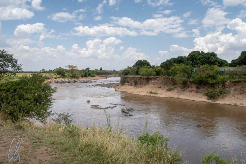 Der Mara-Fluss. Das, was wie eine Gruppe von Felsen aussieht, waren in Wirklichkeit die Rücken von Flusspferden.