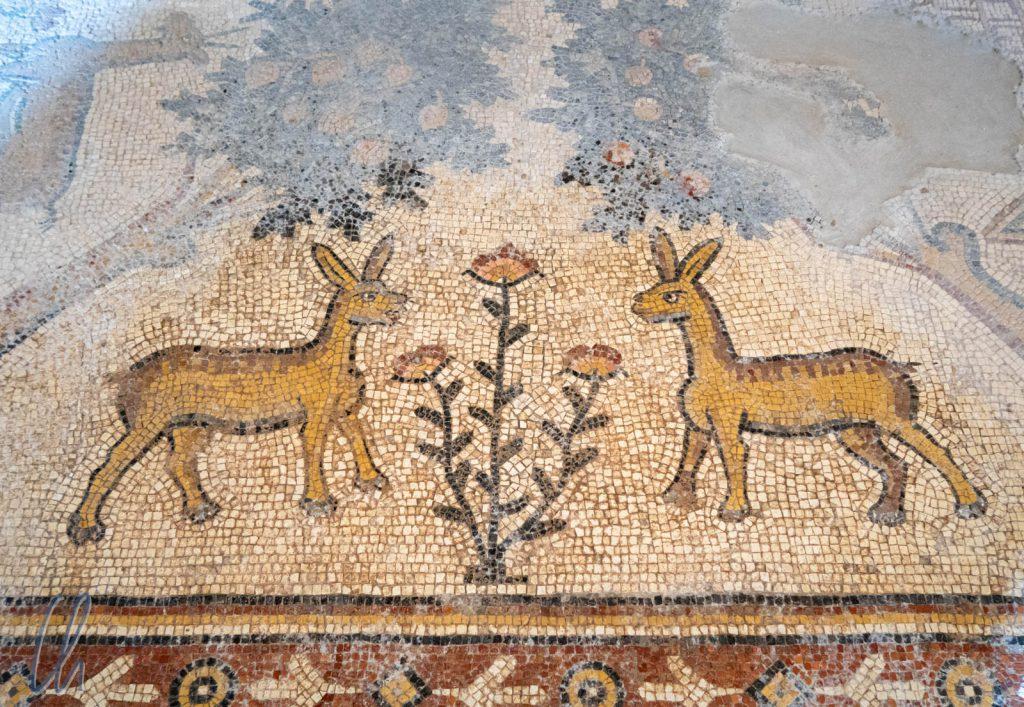 Ein paar Spritzer Wasser brachten die Farben des Jahrhunderte alten Mosaiks wieder zum Leuchten.