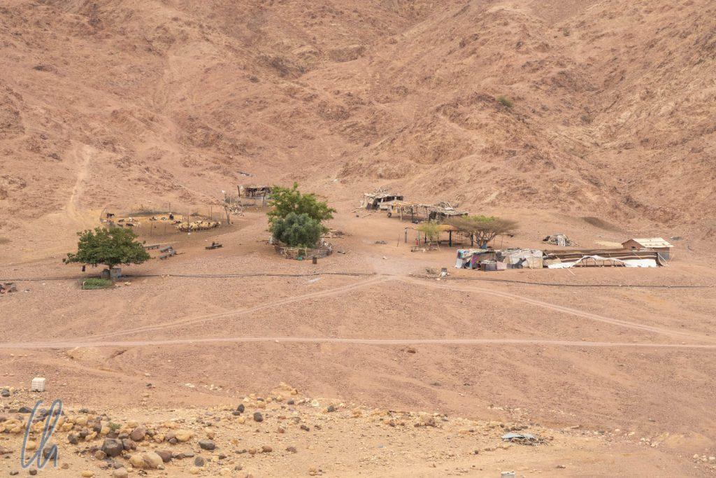 Ein modernes Beduinendorf in der Nähe der Lodge mit Wasserleitung und Gehegen für die Ziegen