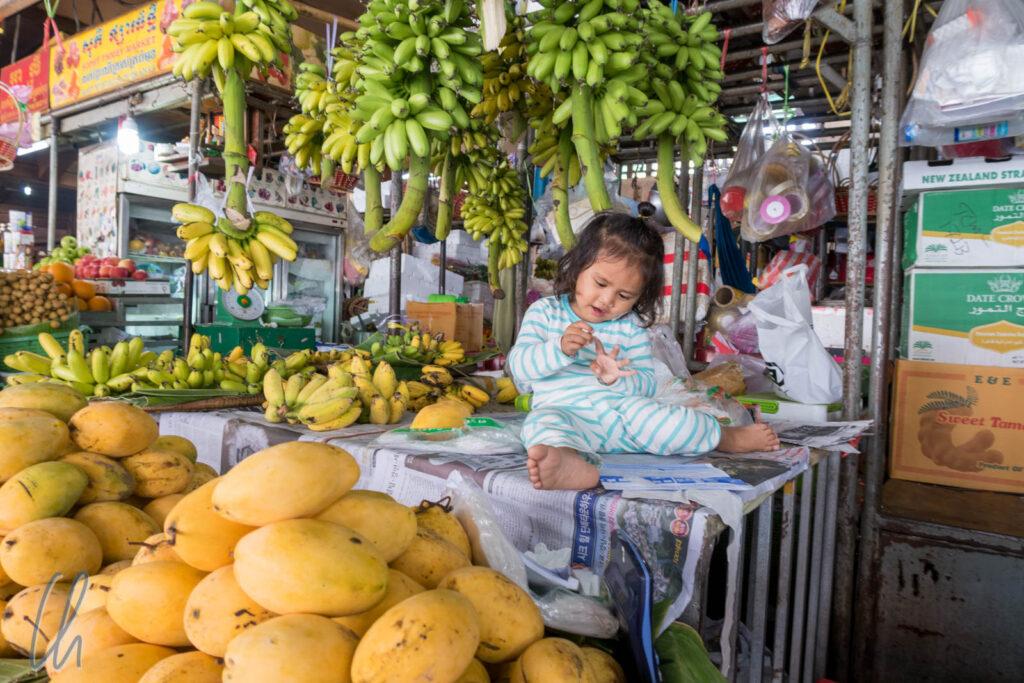 Einkaufen einmal anders, ein Stand mit Früchten in Phnom Penh, Kambodscha
