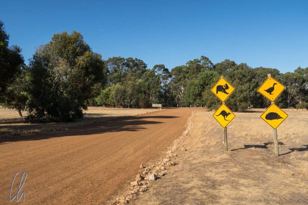 Unser Roadtrip in Australien hatte seinen ganz eigenen Charakter.