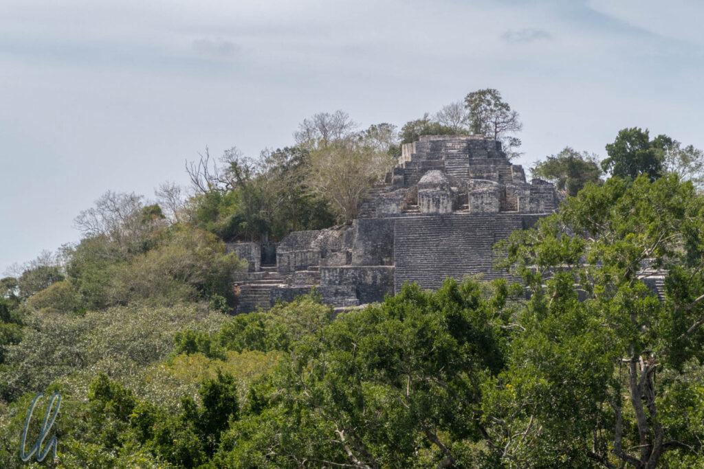 Calakmul, im heutigen Mexiko gelegen, war eine bedeutende Maya-Metropole, die der Dschungel schon lange wieder zurückerobert hat.