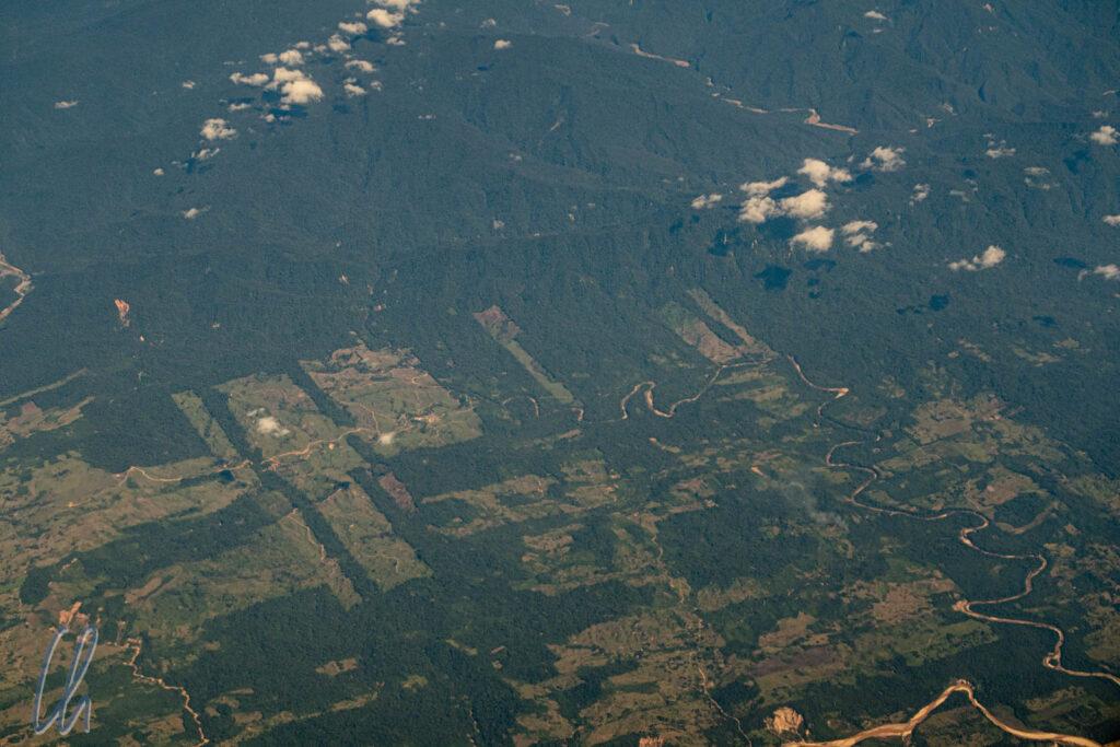 Eines unserer ersten Bilder aus Brasilien. Aus der Luft sahen wir deutlich, wie für die Landwirtschaft Schneisen in den Urwald getrieben werden.